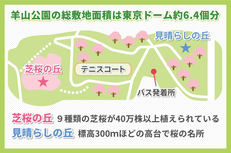 埼玉県秩父市の羊山公園