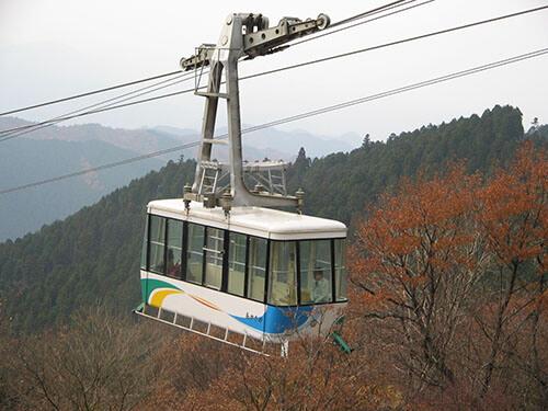 画像提供元:千早赤阪村観光協会